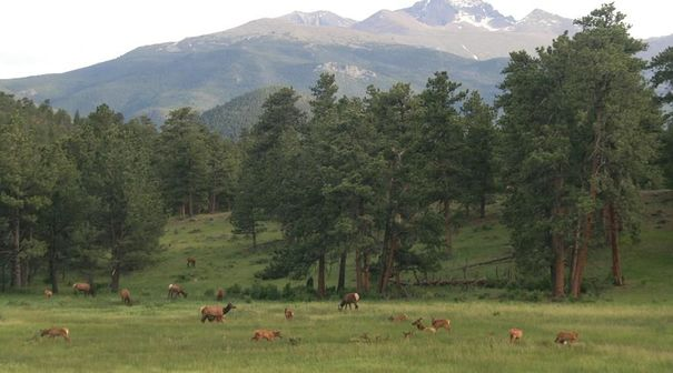 Der Rocky Mountains Nationalpark