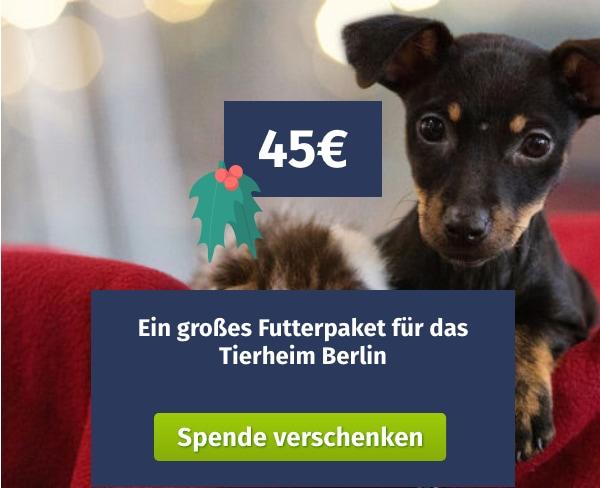 Spende verschenken Berliner Tierheim