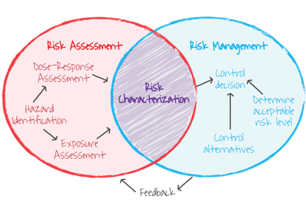 Risk assessment versus risk management