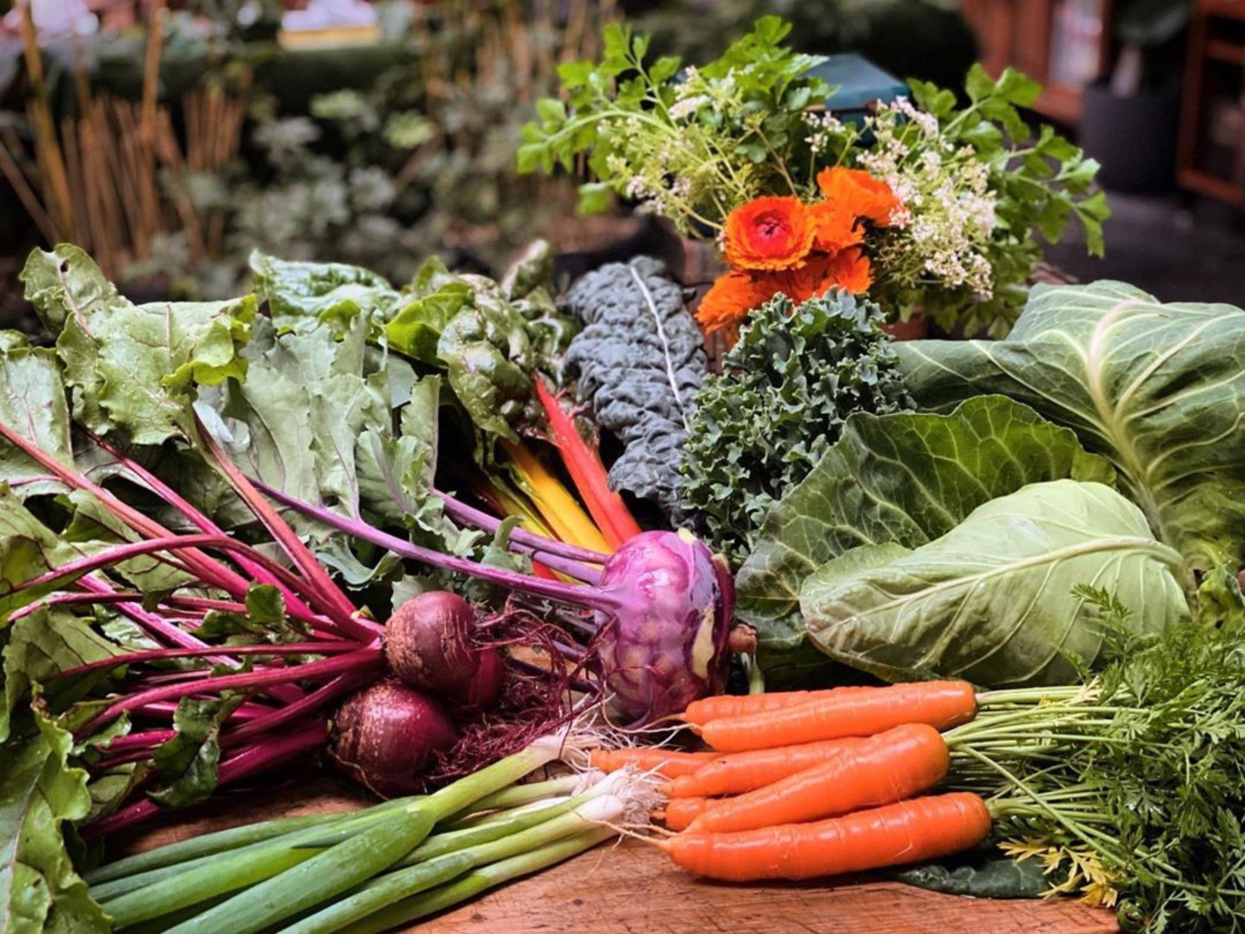Mystwood Harvest produce