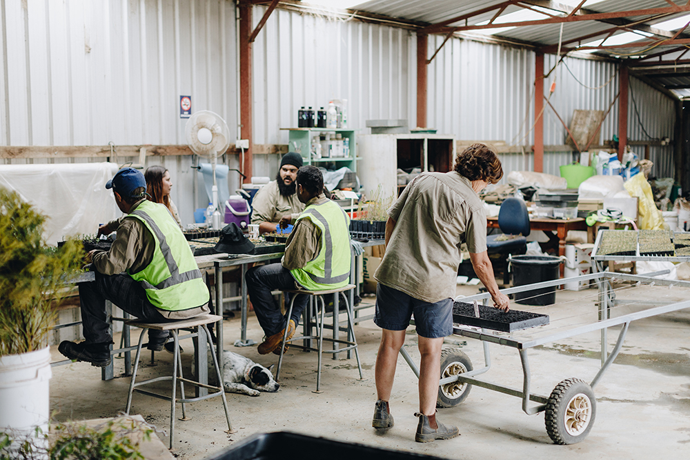 Antoinette and her employees in the shed at Esperance Farm Trees
