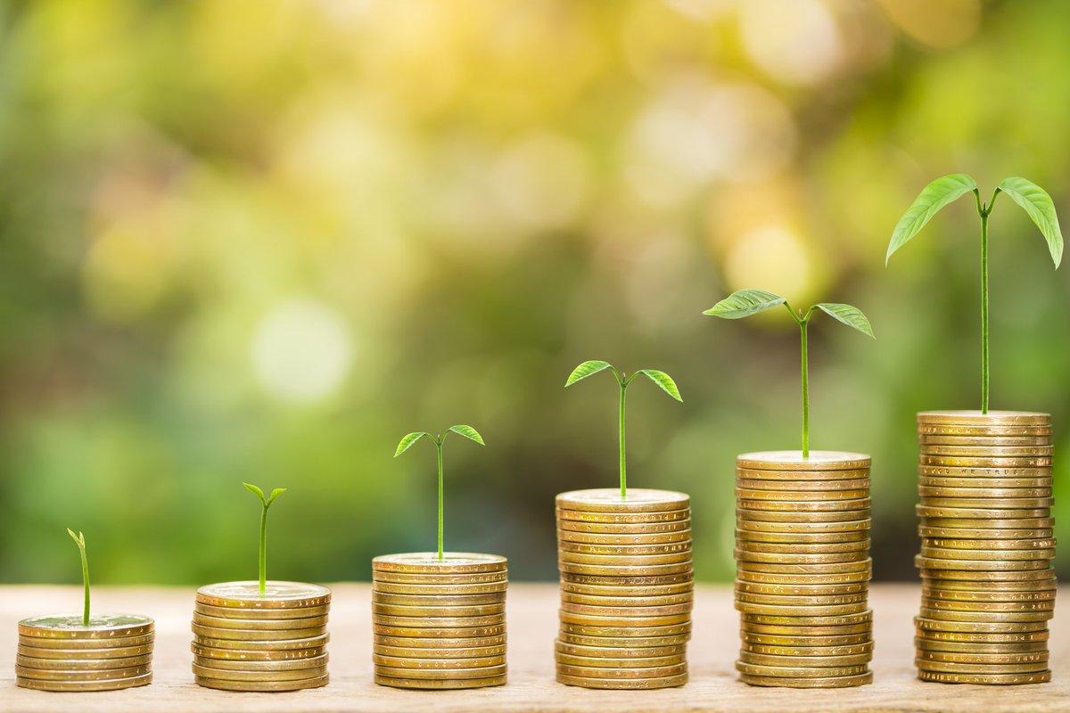 Economia Sustentável: o que é e como posso aplicar?