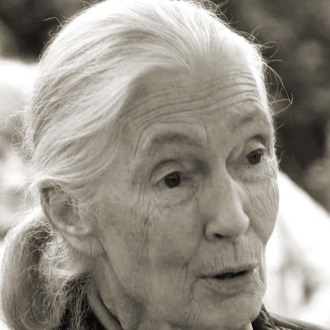 2016 : Jane Goodall