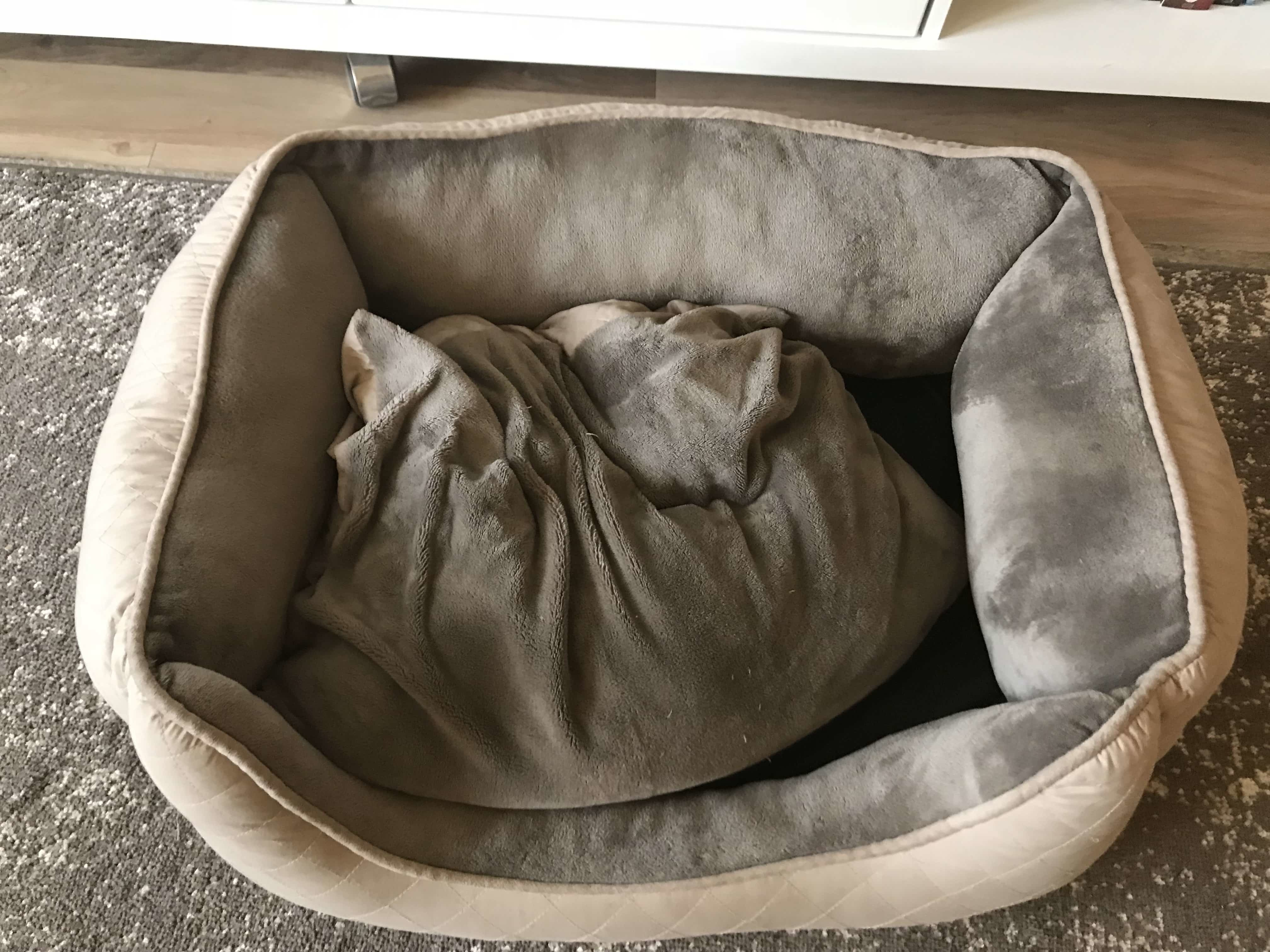 old traditional bed for my dog that smelled bad.