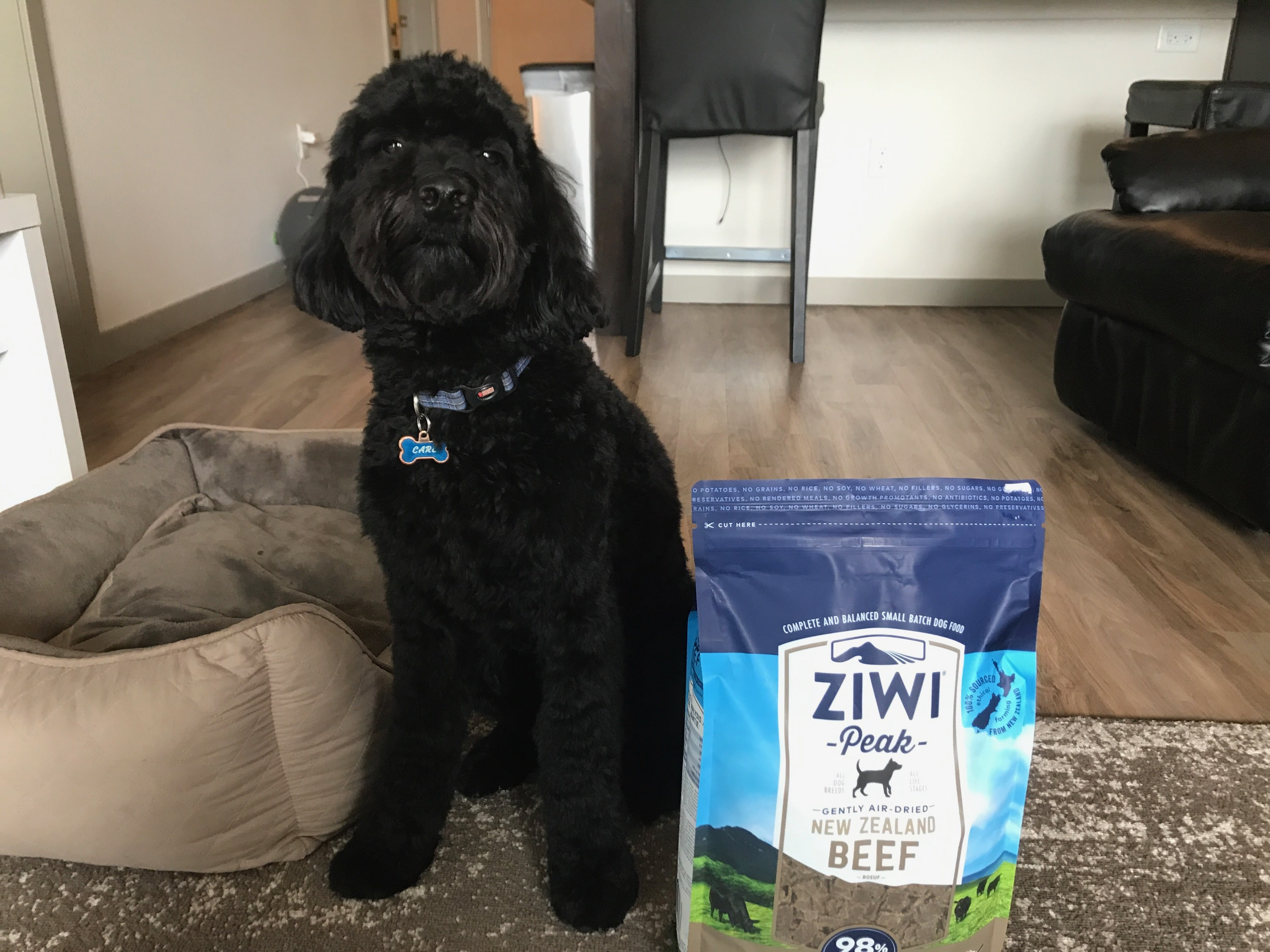 ZiwiPeak air dried dog food review: How it helped my dog