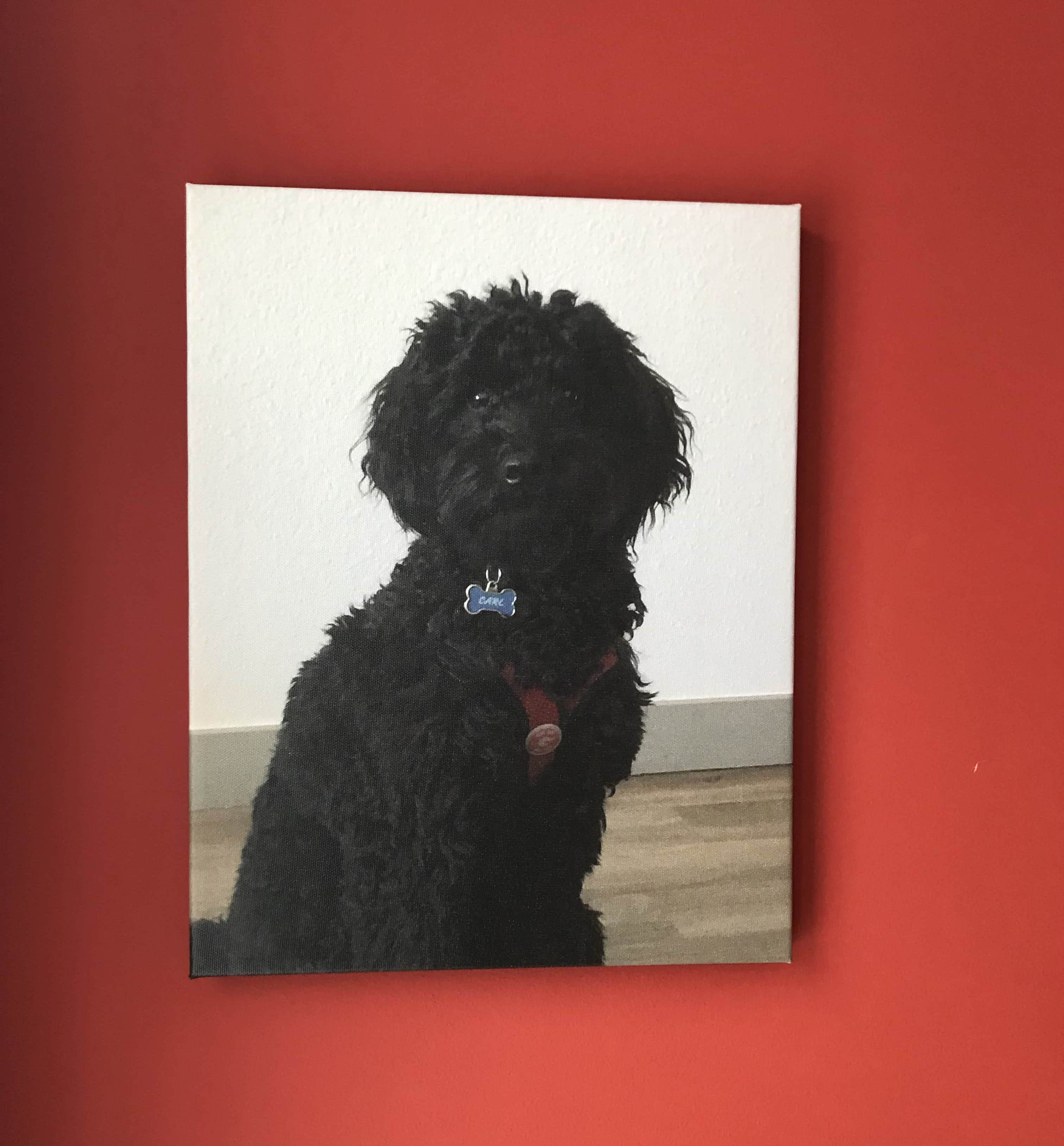 My canvas portrait of my dog carl