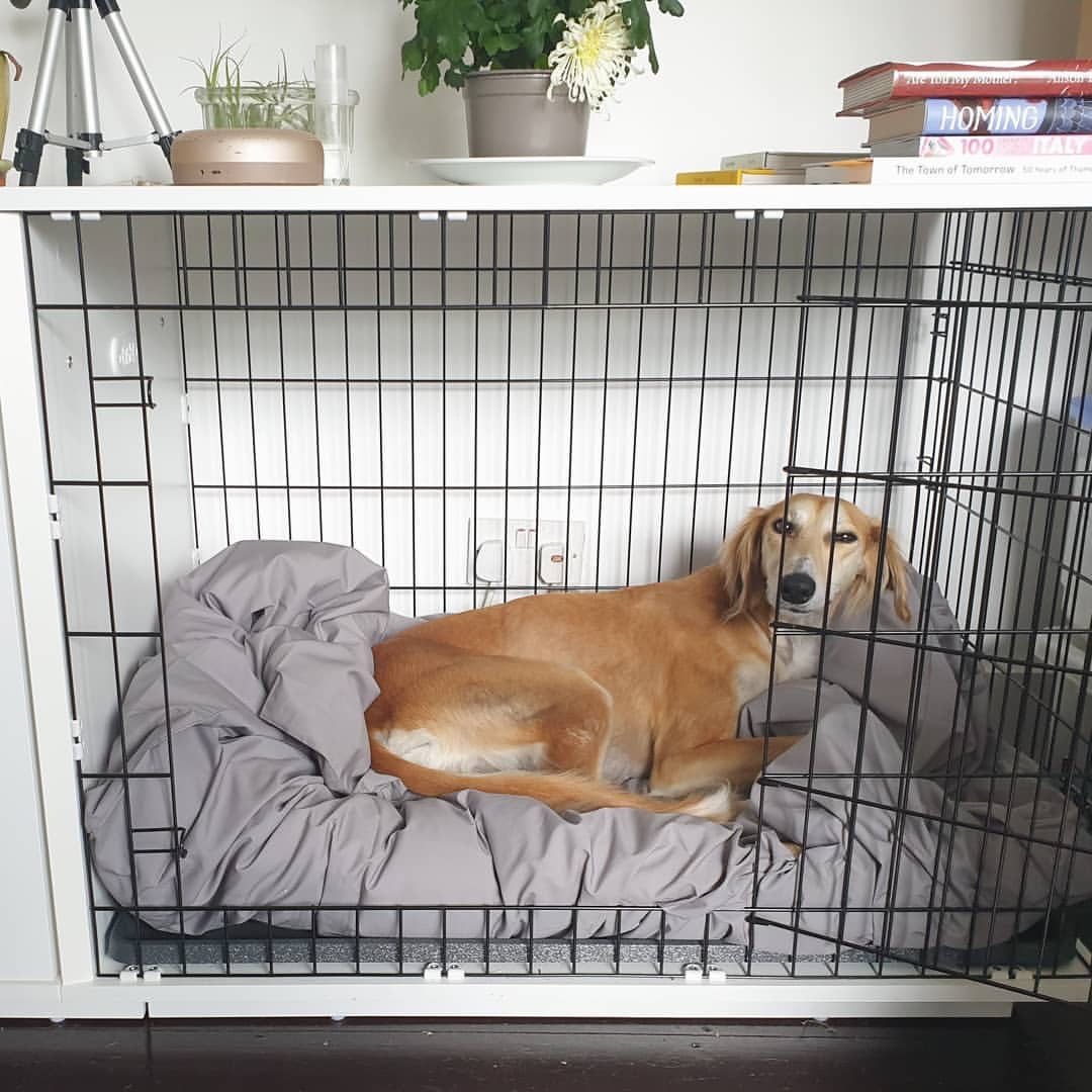 Your guide to choosing the best dog crate furniture