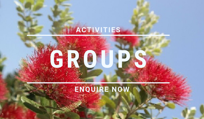 Groups and activities at Beach Pacific Apartments