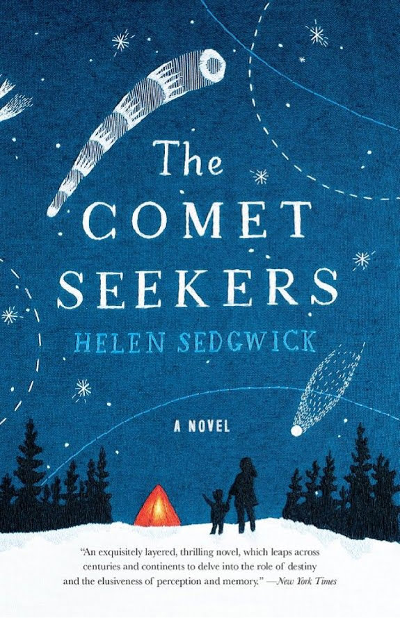 The Comet Seekers: A Novel