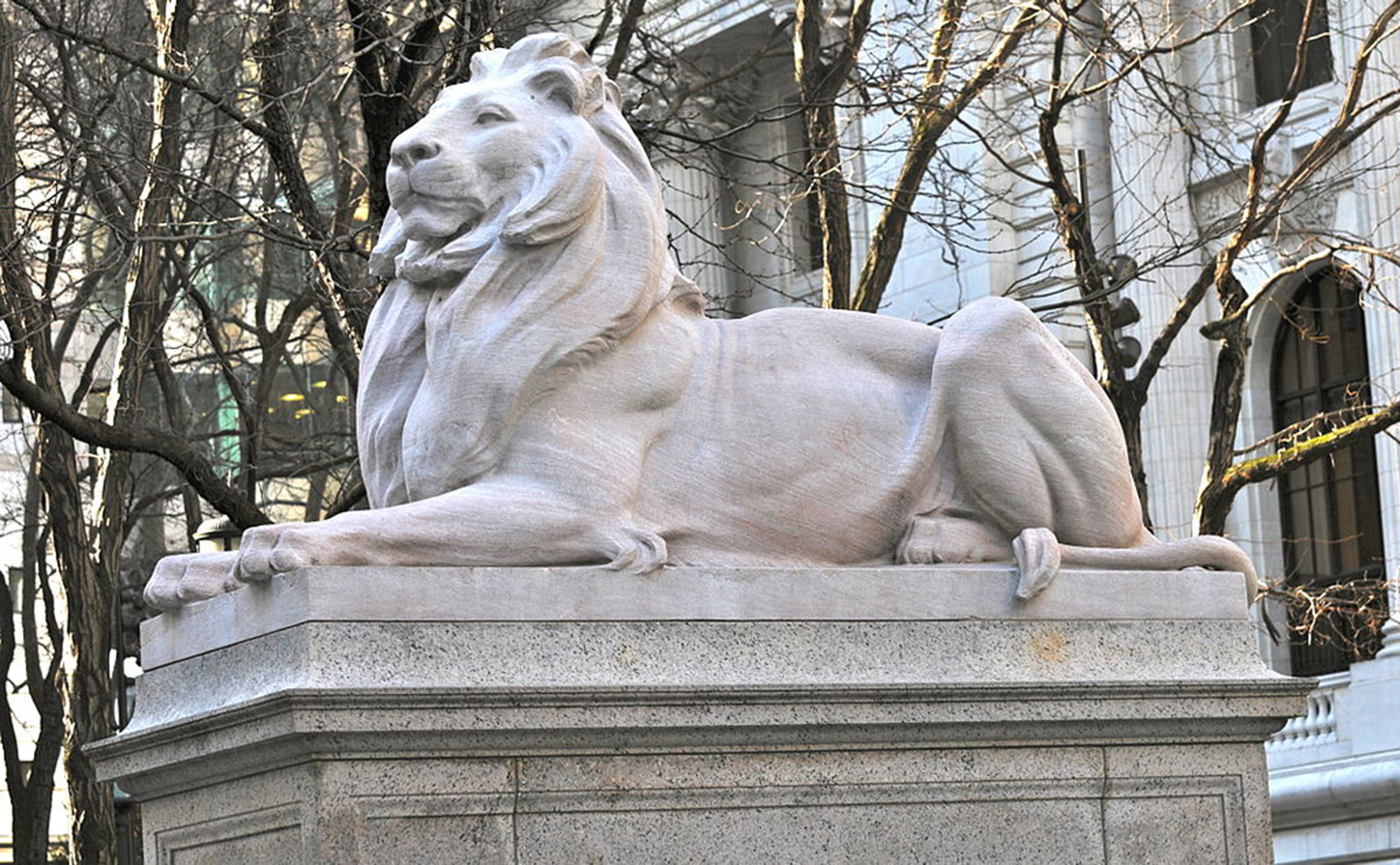 lion statue in front of the new york public library