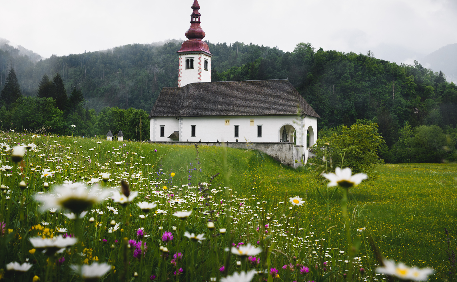a Balkan church in a field of wildflowers