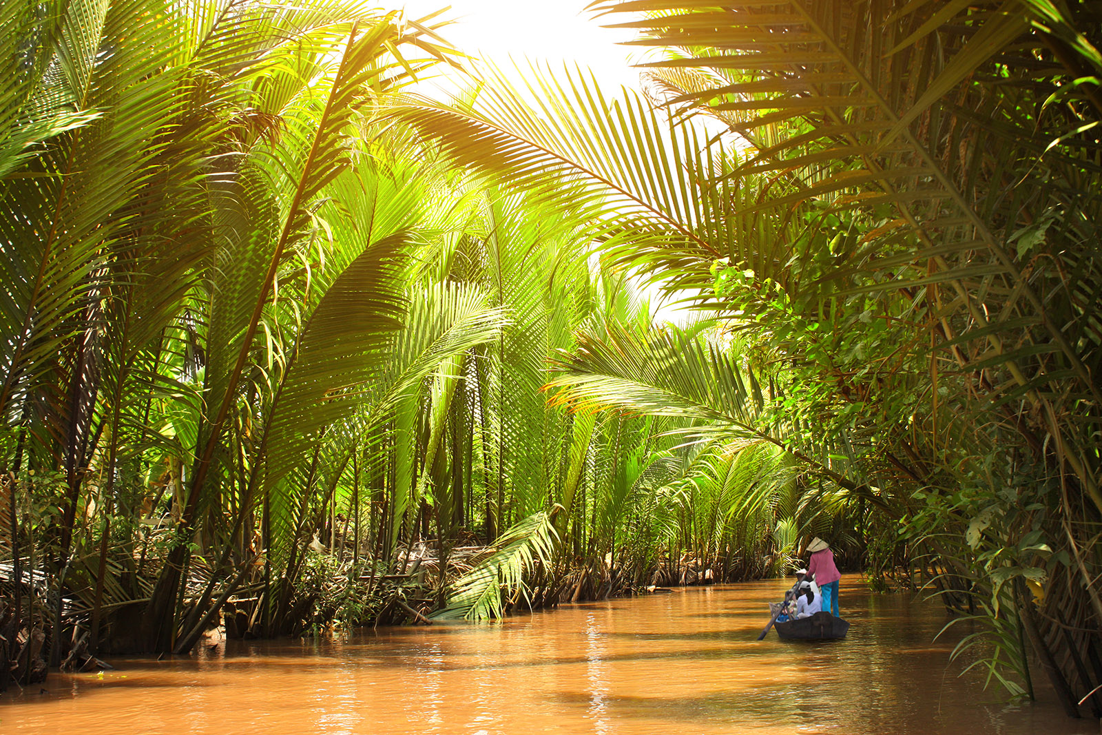 a person paddling a canoe on the mekong river in vietnam