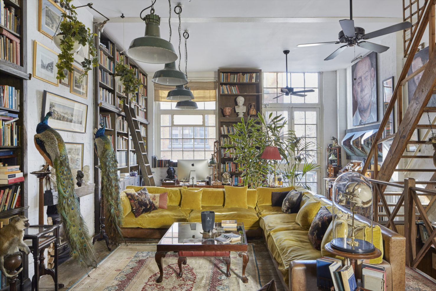 home library shelves and stuffed peacocks