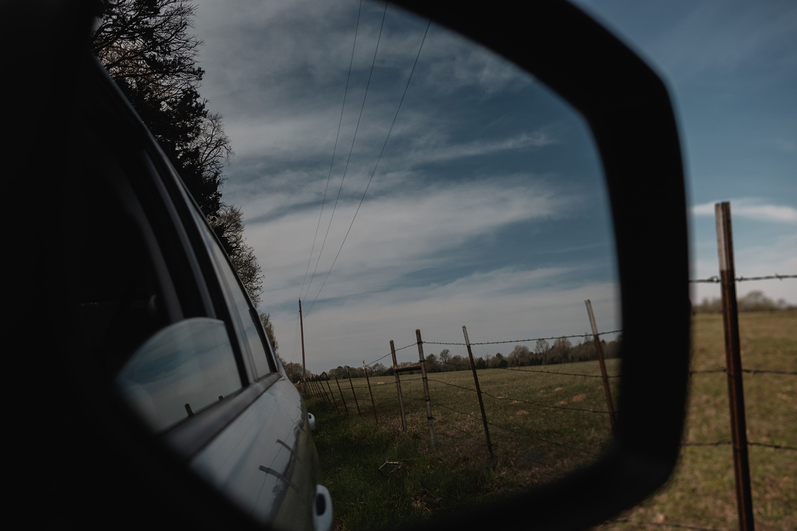view out the car window of east texas field