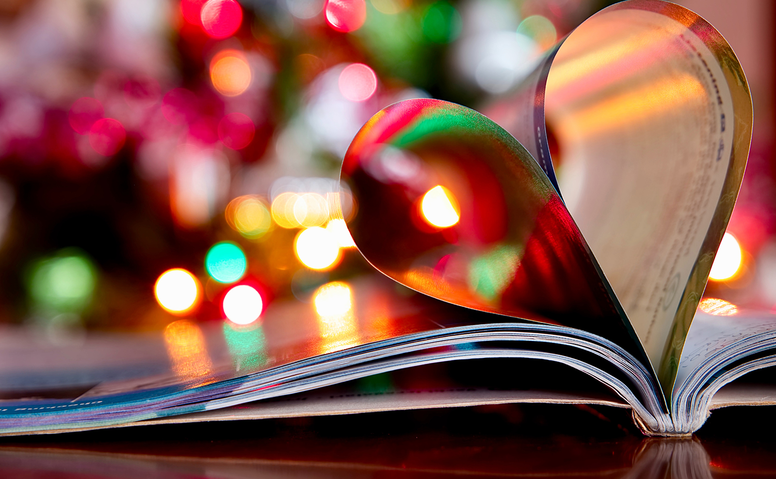 an open book with christmas lights