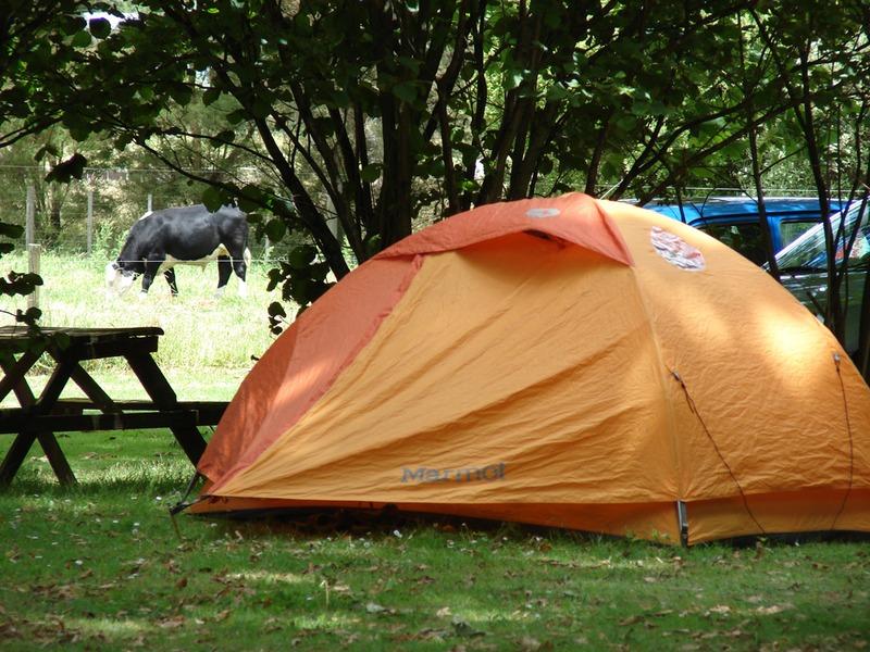 Holiday Park Camping