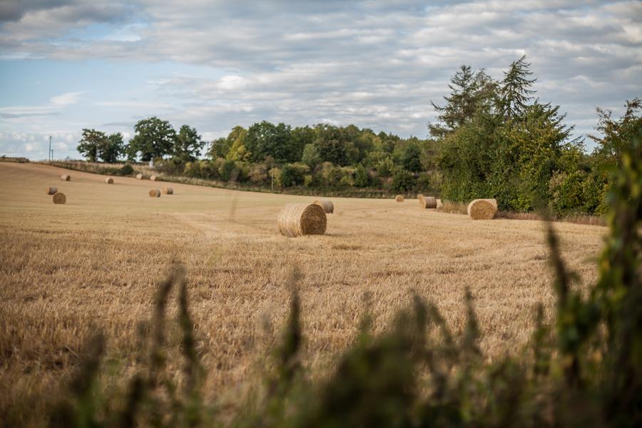 Fields-around-Dalhousie-Castle-Bonnyrig-Edinburgh
