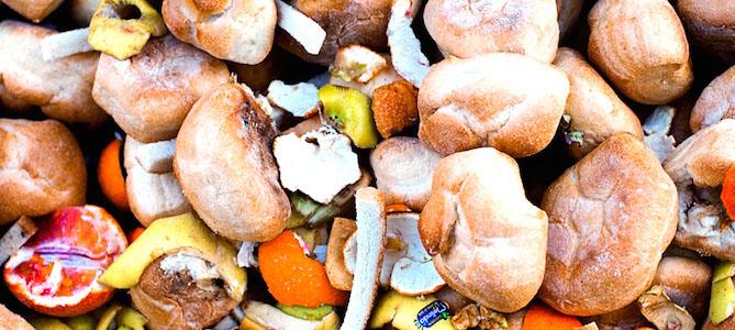 USDA and EPA Set Historic Goal to Cut U.S. Food Waste in Half