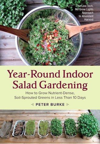 Year Round Indoor Salad Gardening book by Peter Burke