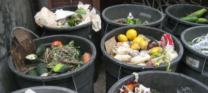 Sign the Petition: Help End Food Waste