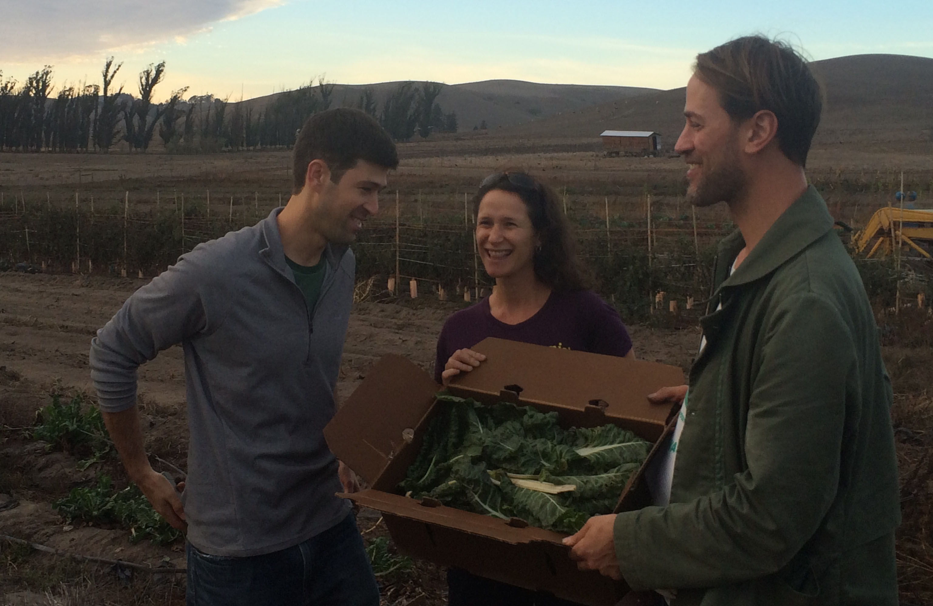 Jonathan Bloom, Dana Gunders and Tristram Stuart show what they gleaned at Bloomfield Organics for Feeding the 5000: Oakland