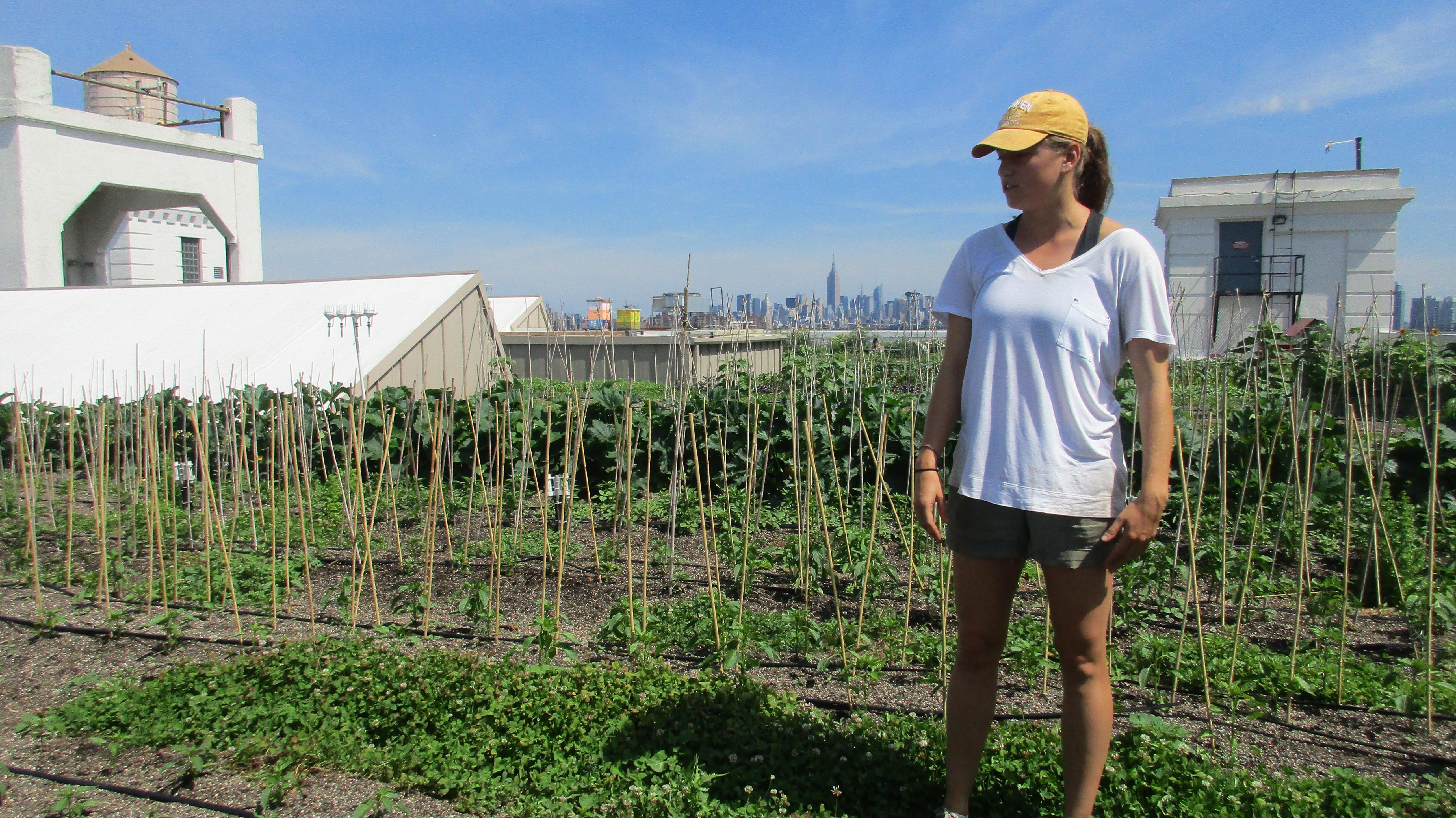 Brooklyn Grange's assistant farm manager Michelle Cashen