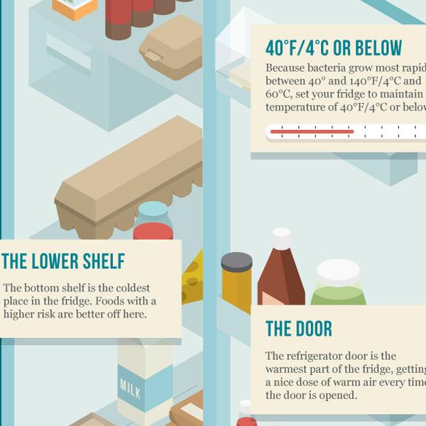 Refrigerator Organization Guide