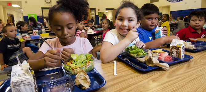 Why (and How!) Your School Should Do a Student Food Waste Audit