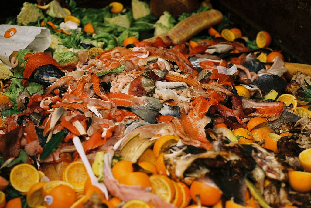The Massachusetts Food Waste Ban