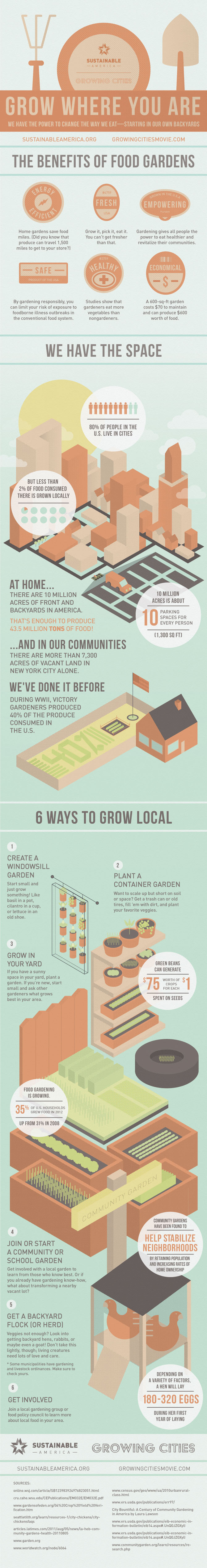 Grow Where You Are Information Graphic