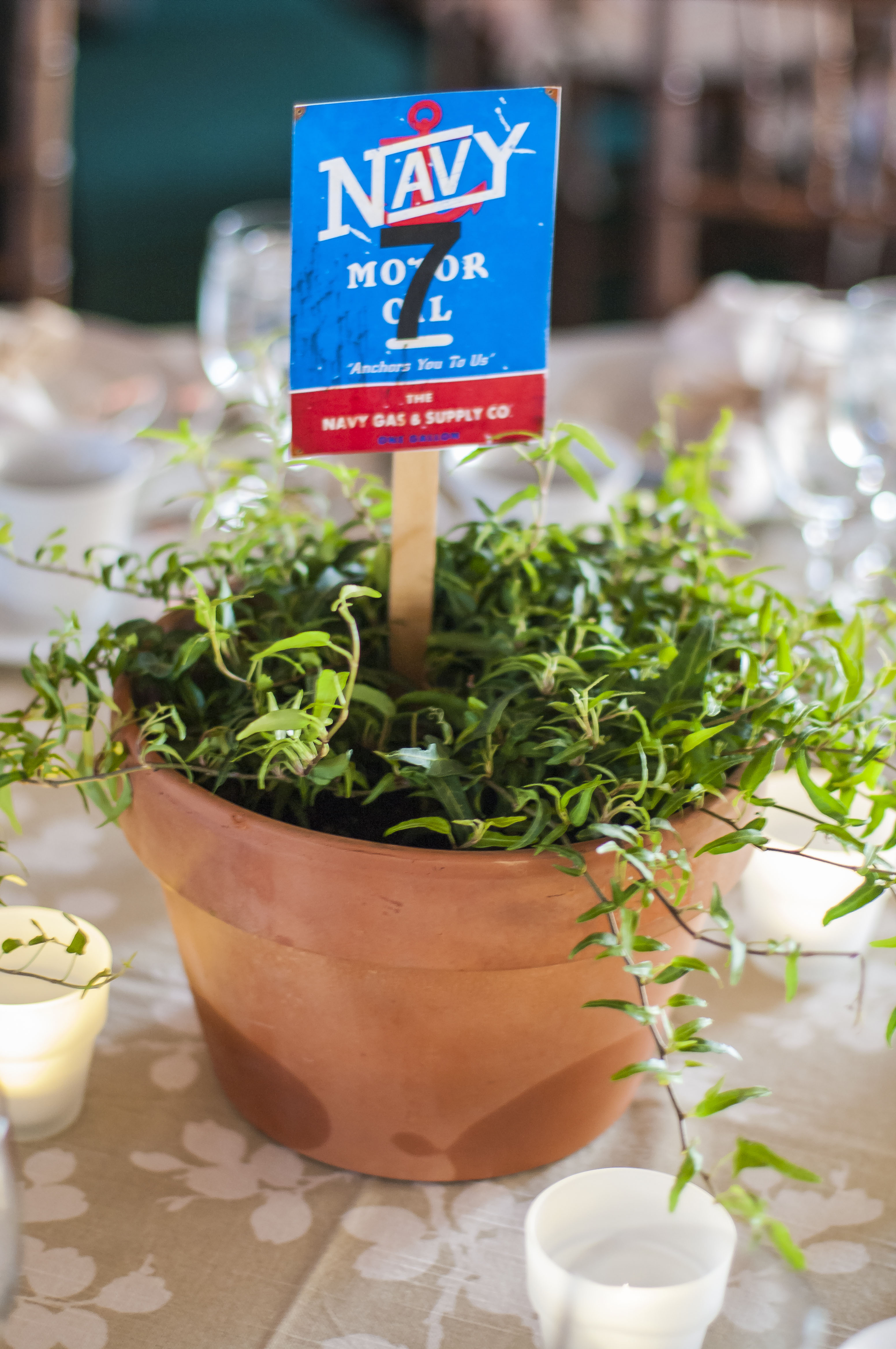 Centerpieces donated by Geiger's Landscaping