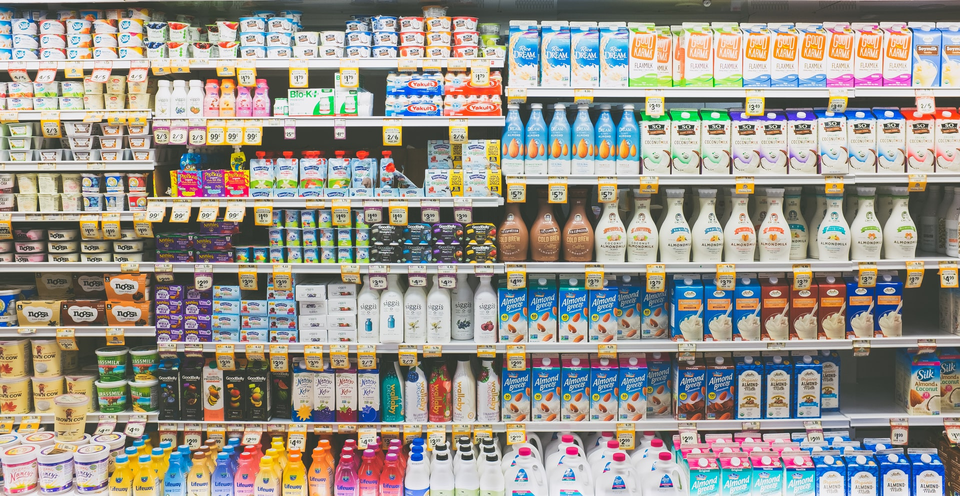 Got (Eco-Friendly) Milk? The Ultimate Guide to Dairy & Milk Substitutes
