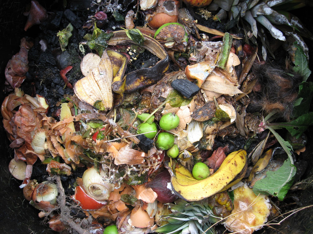 The Future Looks Bright for Compost Pioneers