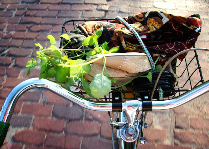 bike basket with groceries and shoes in it