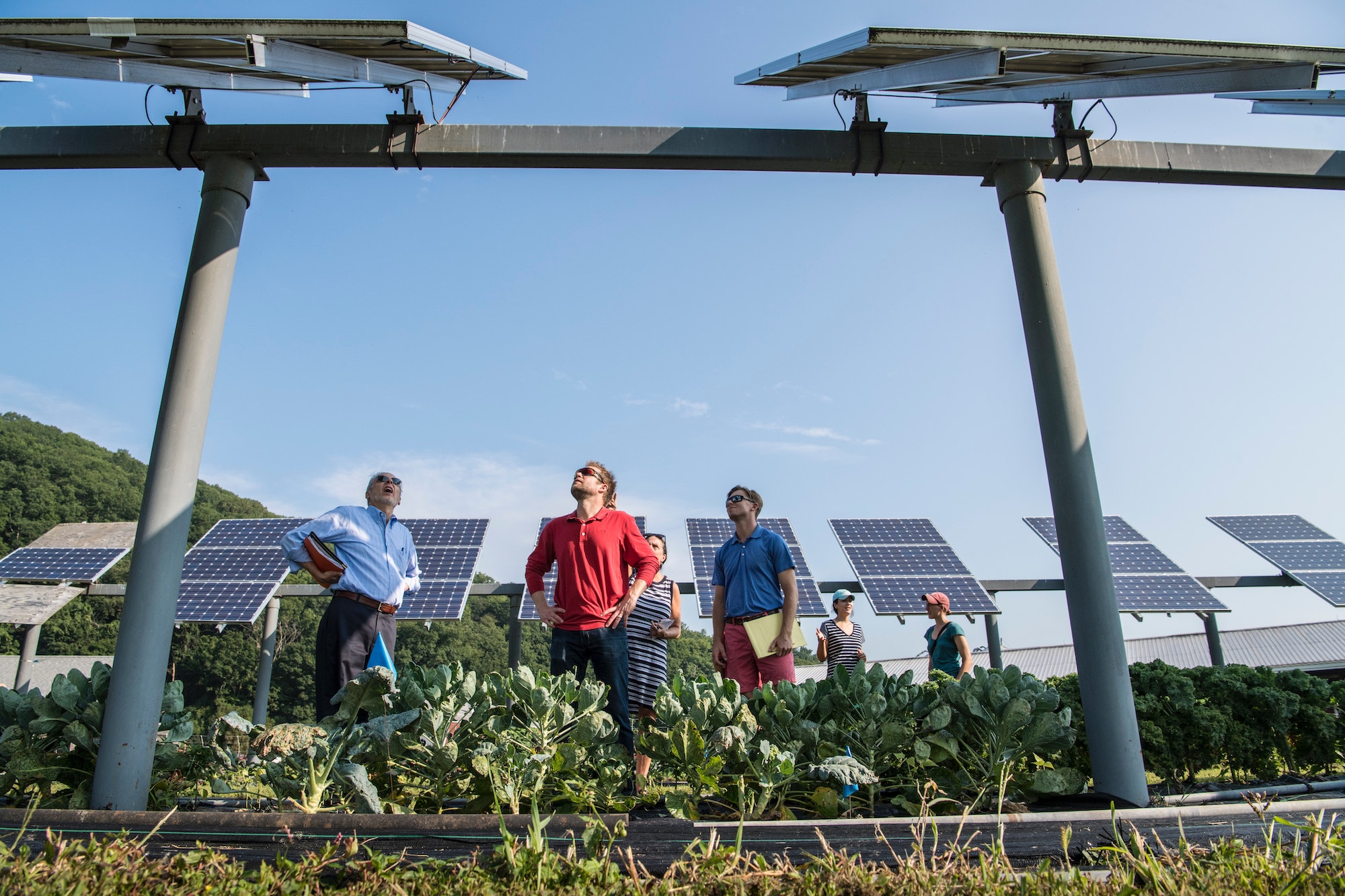 Are microgrids the answer to helping rural areas be more sustainable?