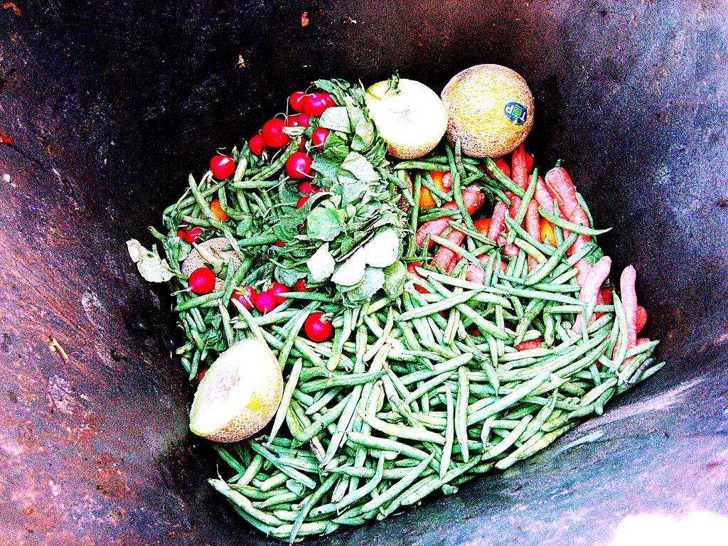 Tackling the Food Waste Crisis