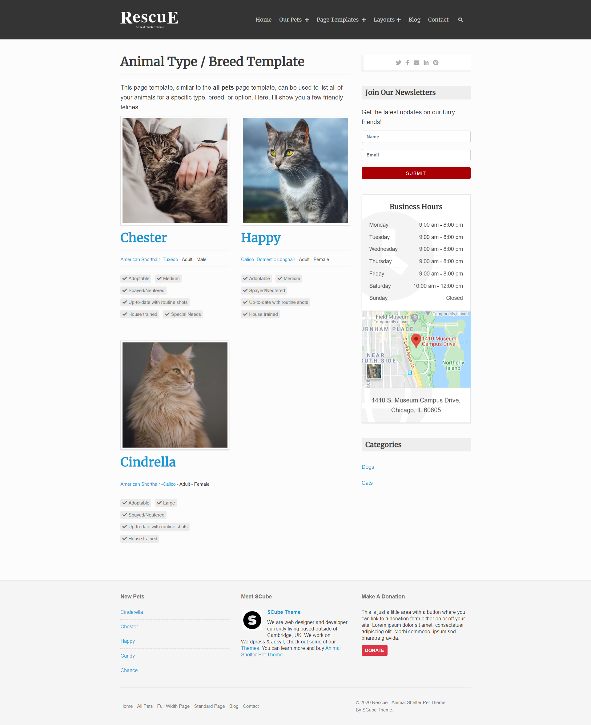 Pets Cats Page
