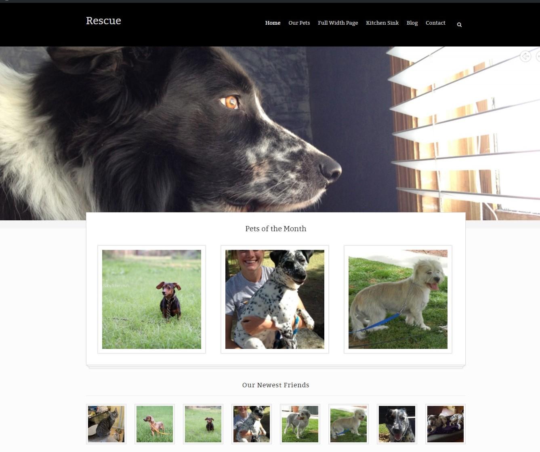 Rescue Animal Shelter theme