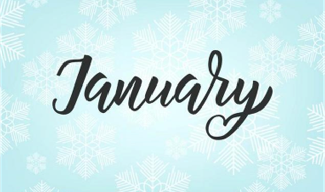 Ismay Realty Group January Newsletter