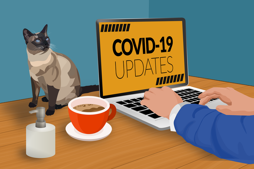 New cases of COVID-19 confirmed – no community transmission