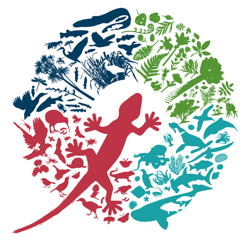 Conservation Week 14 - 22 September celebrates 50 years