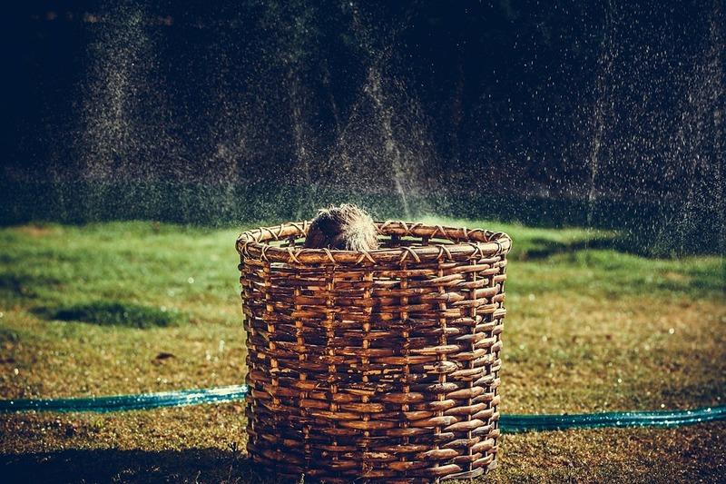 Sprinkler restrictions still necessary