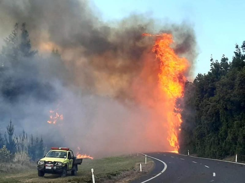 Stay away from wild fire - Civil Defence