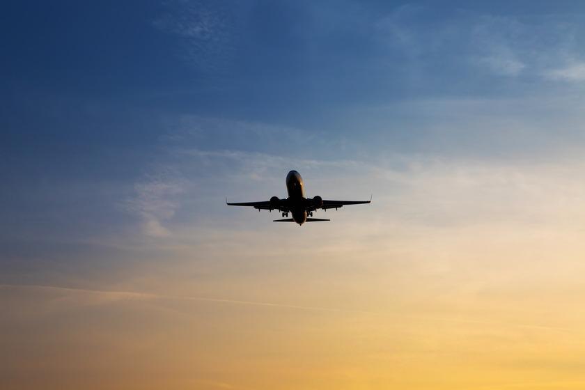 Travelling Kiwis urged to return home
