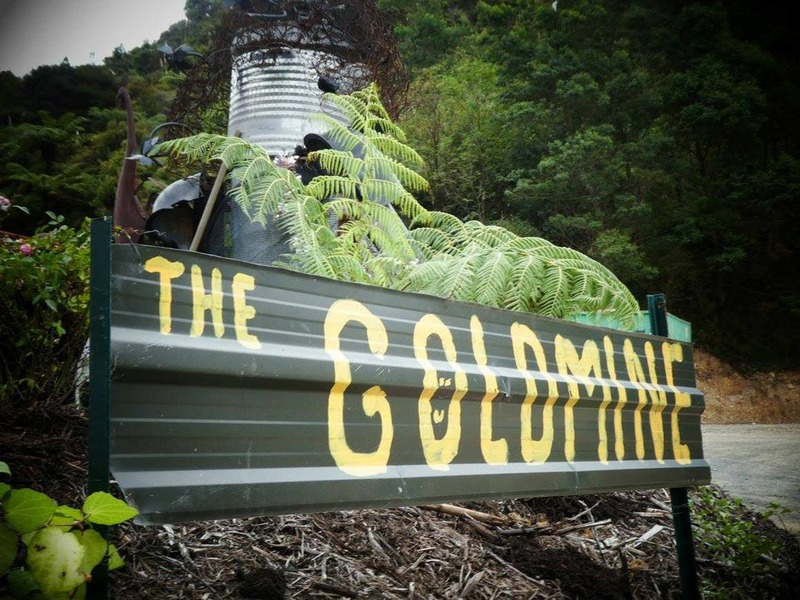 Coromandel Town Goldmine becoming a popular sustainable business