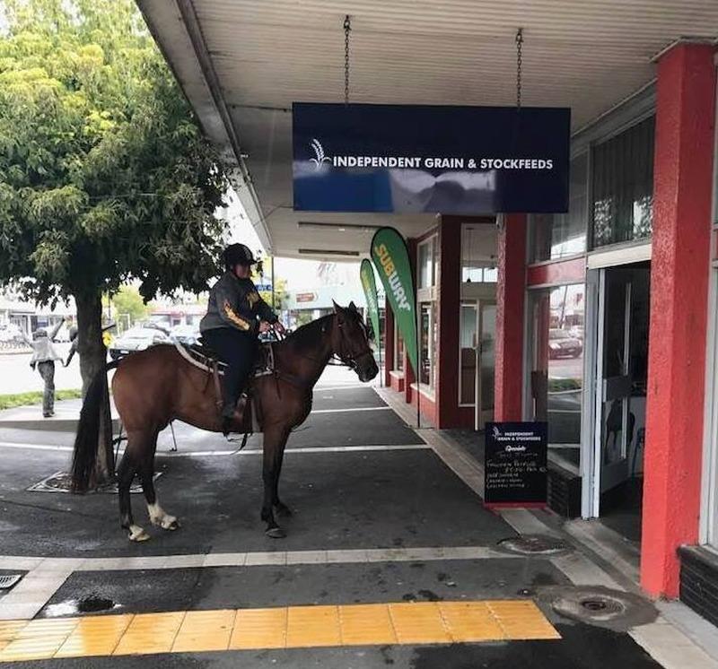 Independent Grain and Stockfeeds opens in Waihi