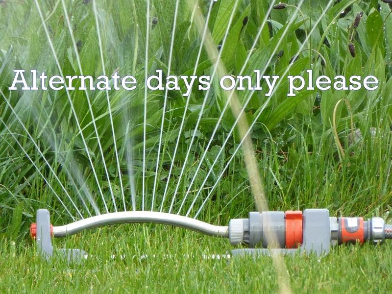 Sprinkler restrictions still necessary on alternate days