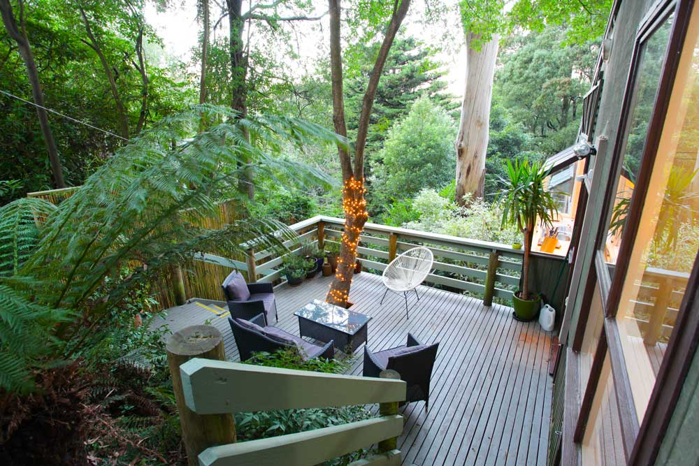 Tree Top Stay