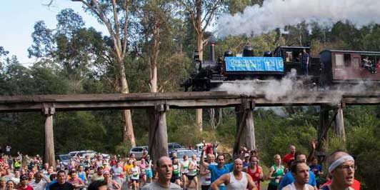 The Great Train Race against Puffing Billy