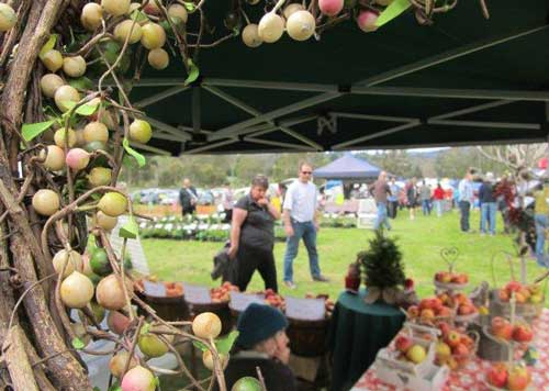 Rotary Club of Lilydale's Craft & Produce Market